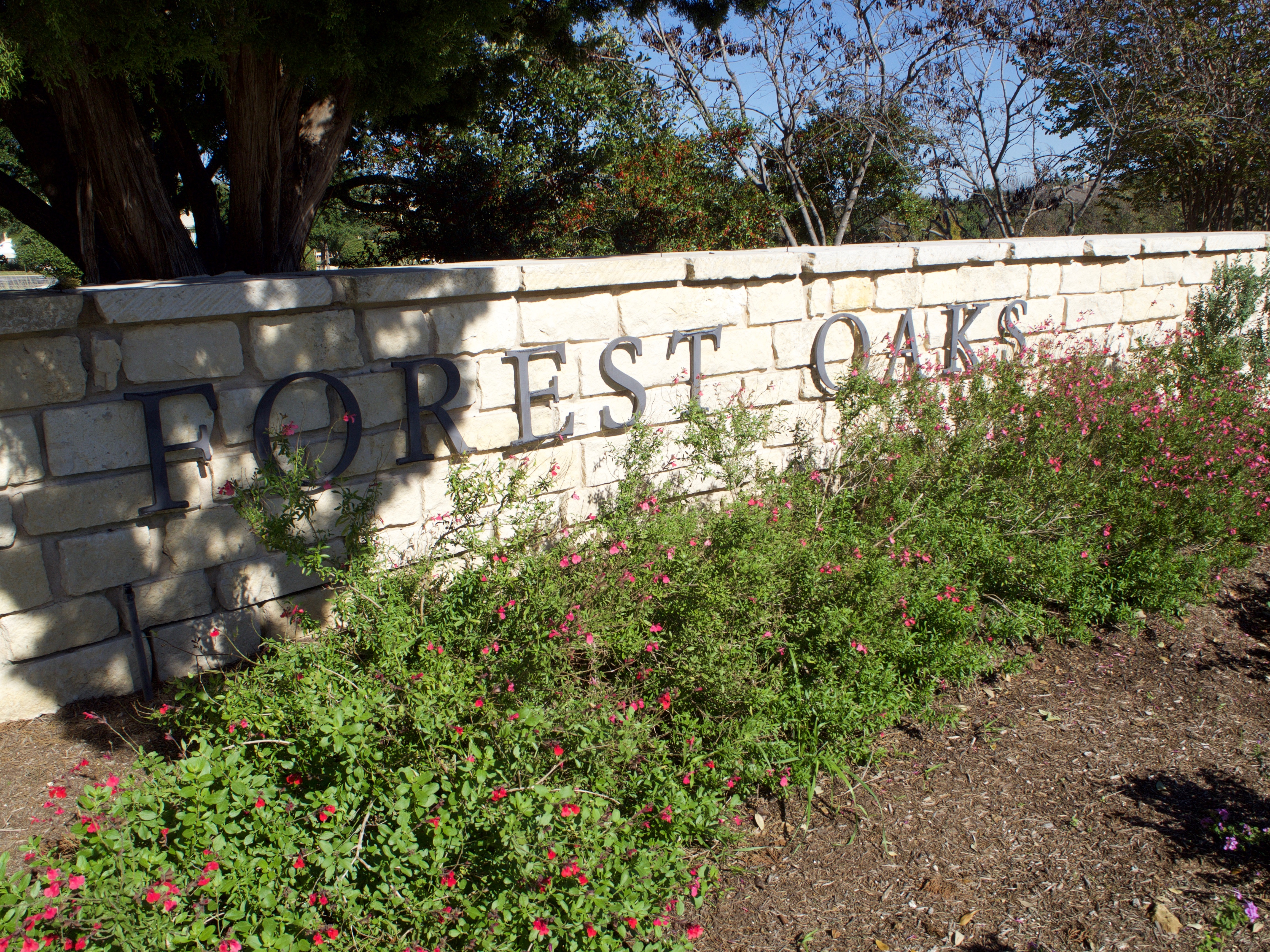 Forest Oaks HOA: Taking a Proactive Approach to Large Property