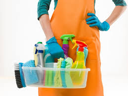 Disinfecting Tips for Toilets Image 1 - SGMY