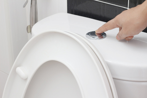 Disinfecting Tips for Toilets Image 3 - SGMY