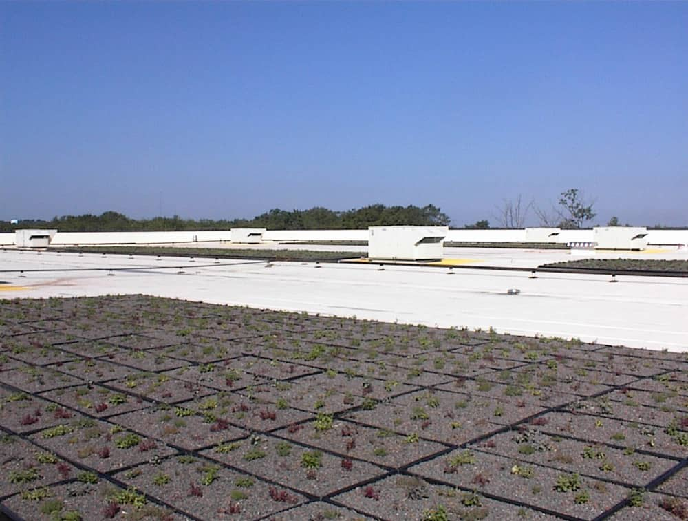 Green Roof Membranes By Fibertite