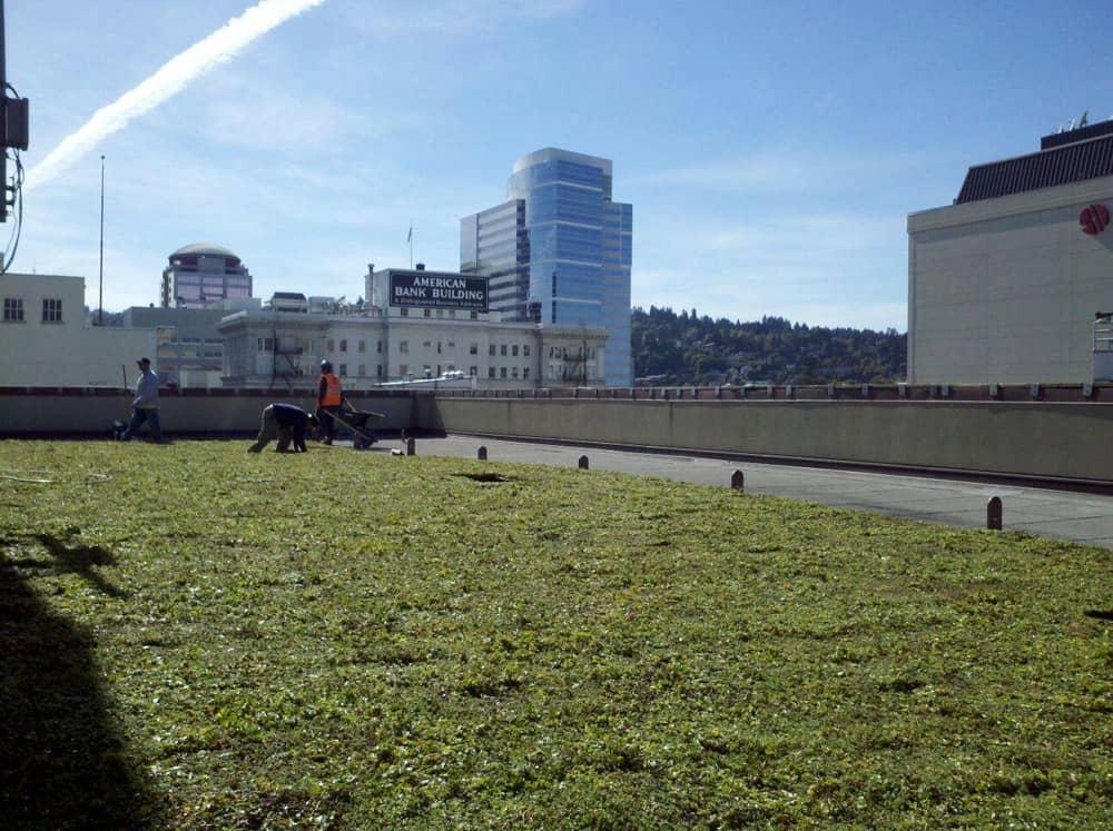 Green roof membranes by fibertite for Ikea avon ohio