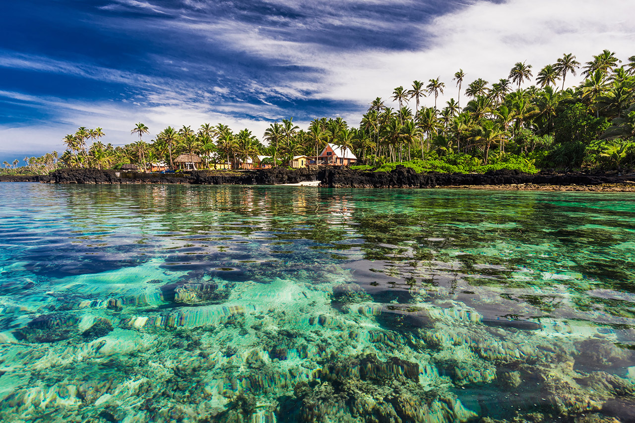 coral-reef-lagoon-with-palm-trees-on-the-beach