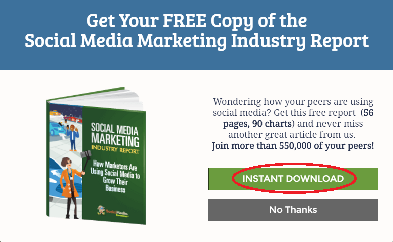 Sample Lead Magnet-Social Media Examiner.png