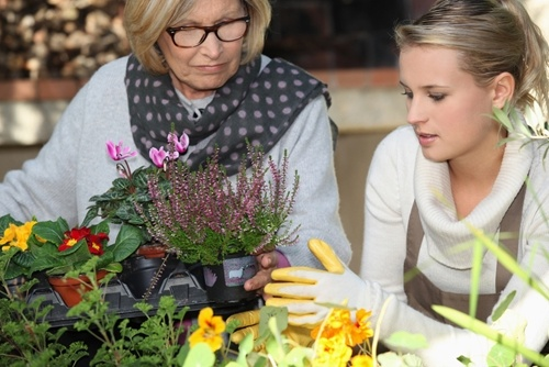 Make the most of a portable garden with these tips.