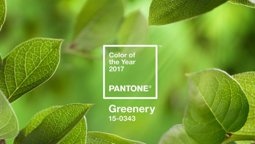Pantone Color of the Year | BBJ Linen