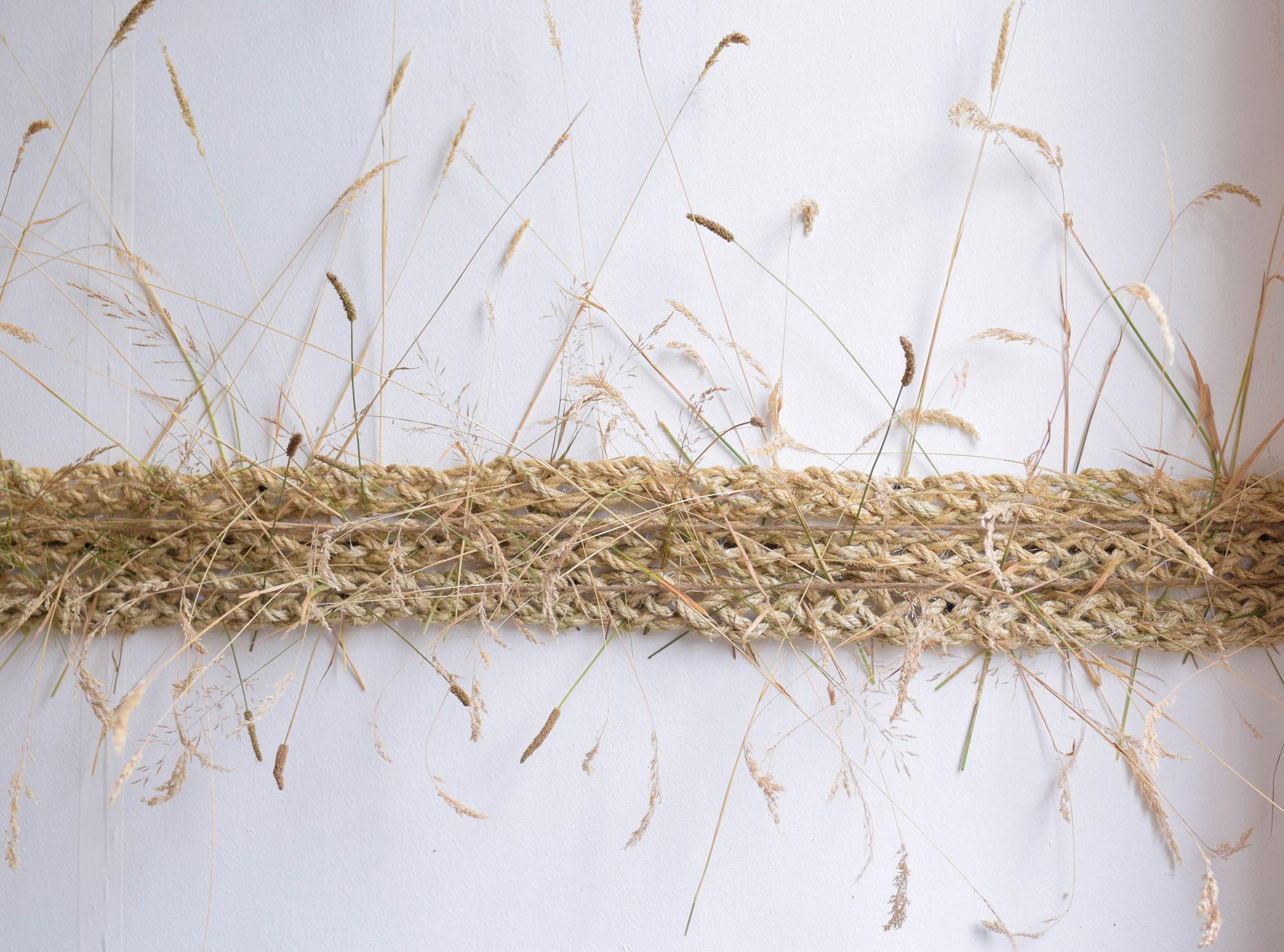 BBJ-Photoshoot--Curious-Lola---Grass-(3)
