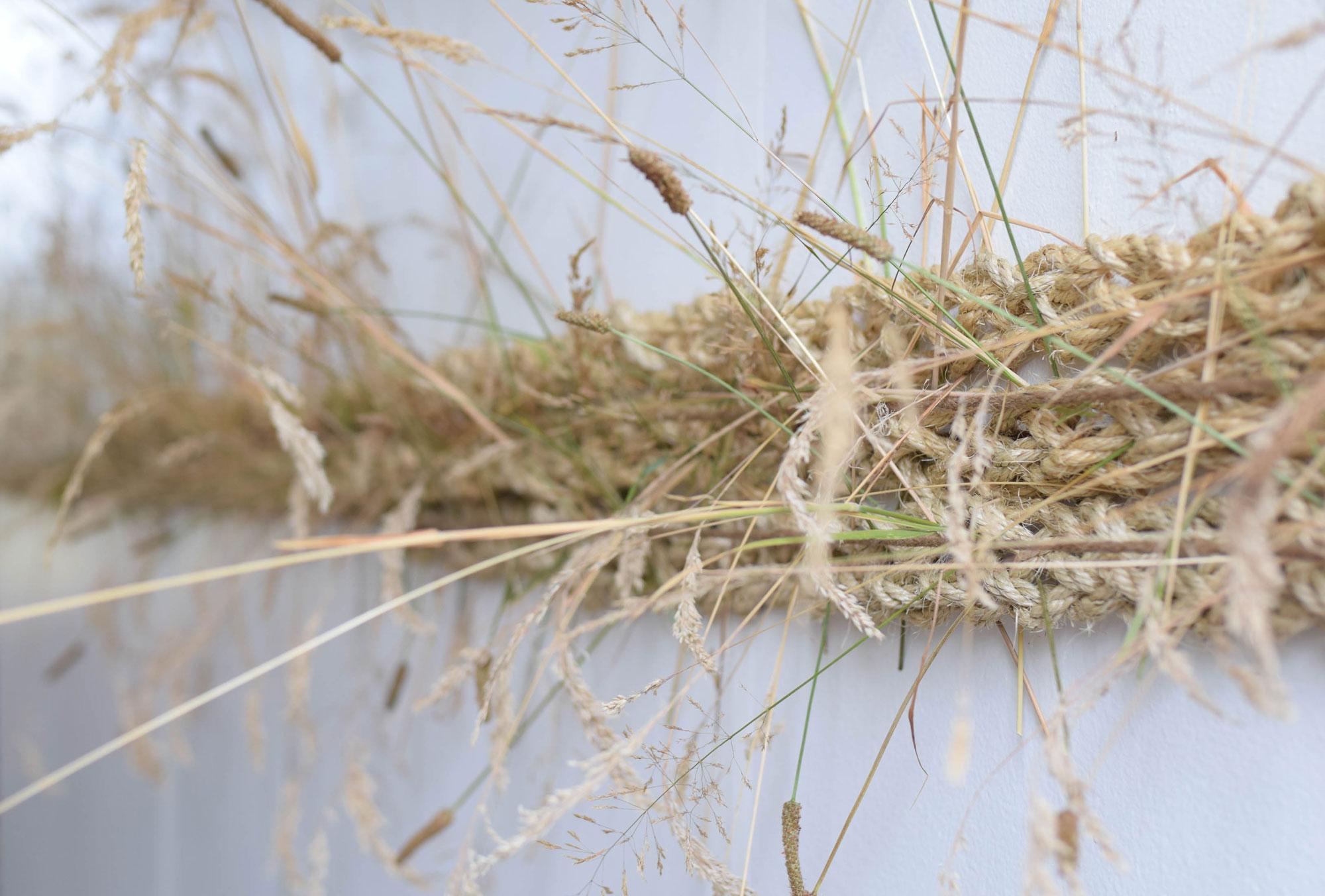 BBJ-Photoshoot--Curious-Lola---Grass-(5)
