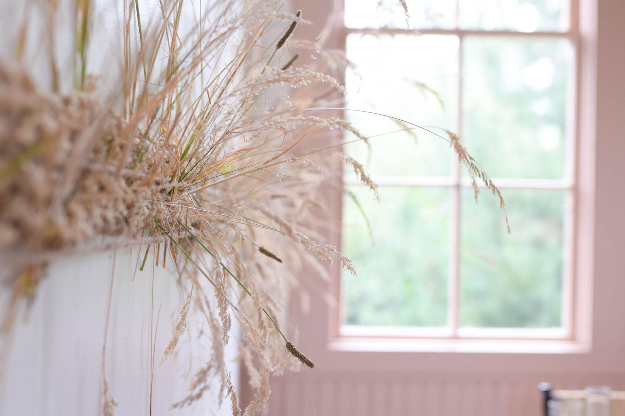 BBJ-Photoshoot--Curious-Lola---Grass-(8)