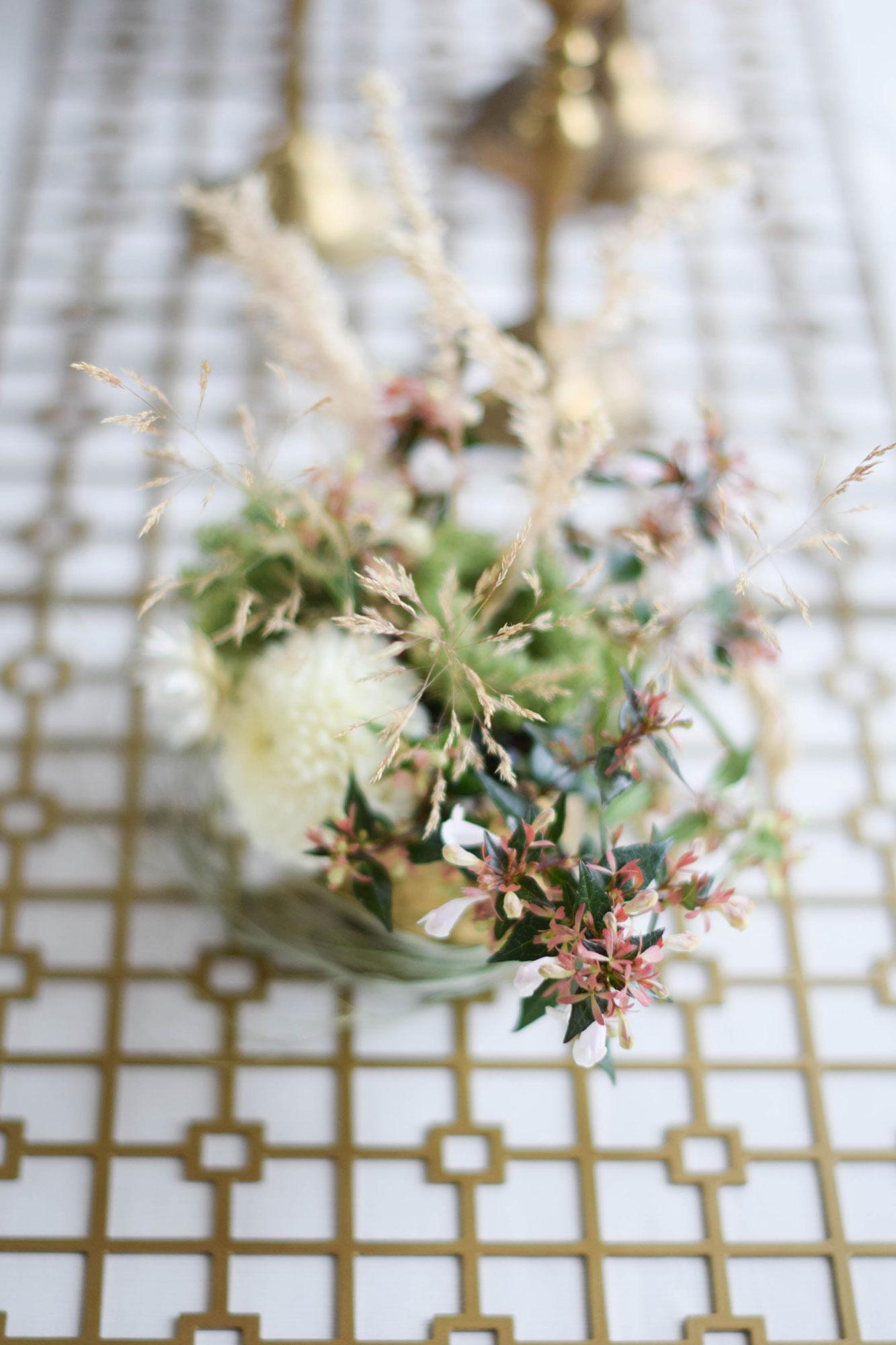 BBJ-Photoshoot--Curious-Lola--Flower-small-(3)