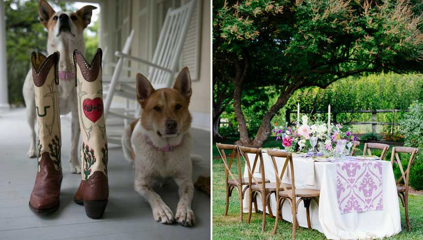 rustic-wedding-outdoor-chair-dogs