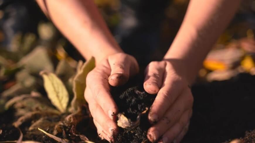 woman's hands holding soil