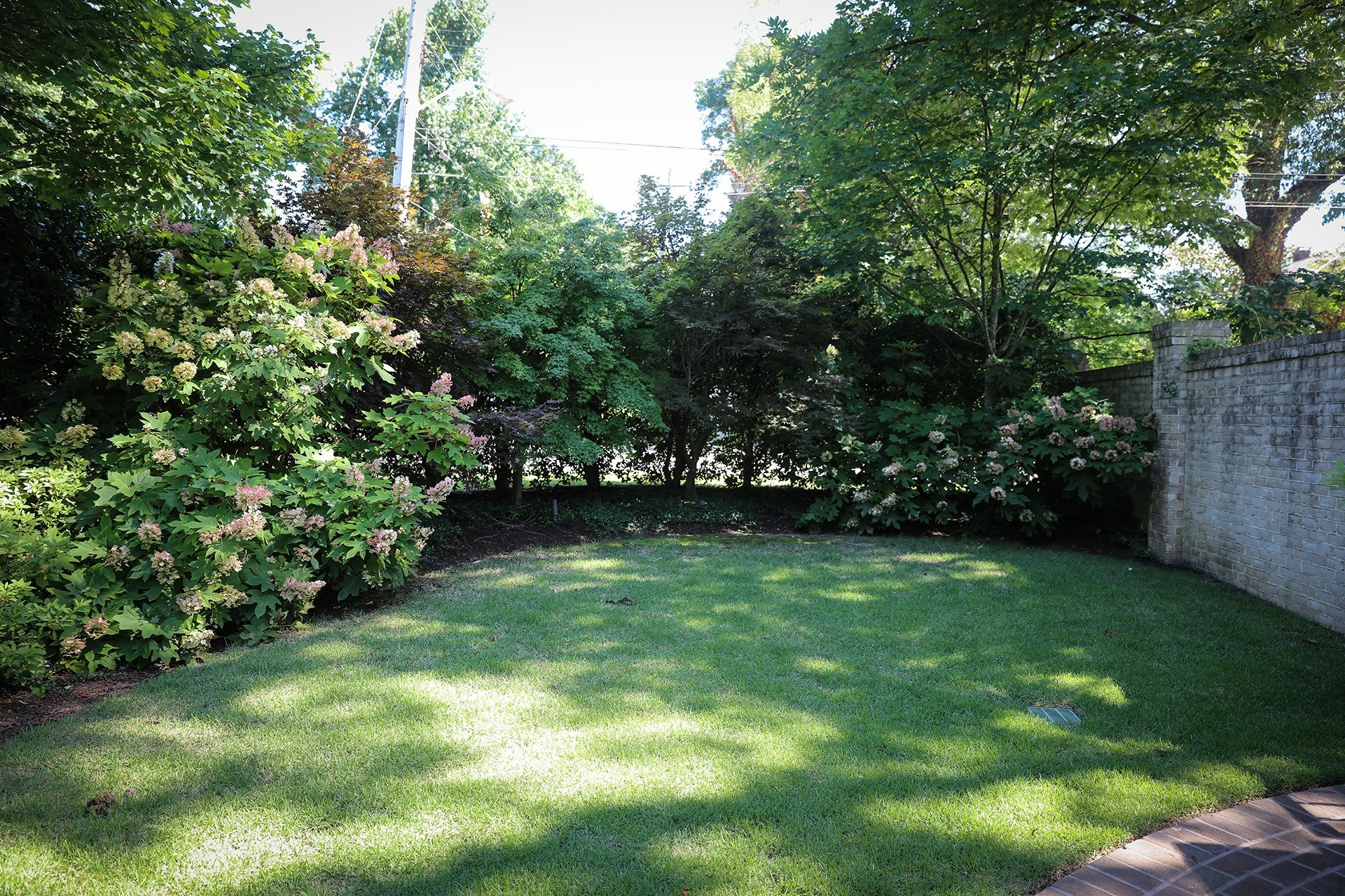 4 questions to ask when planning your memphis landscape design for Garden design questions