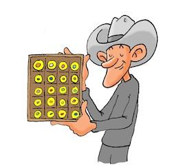 Collectible Crypto Coins
