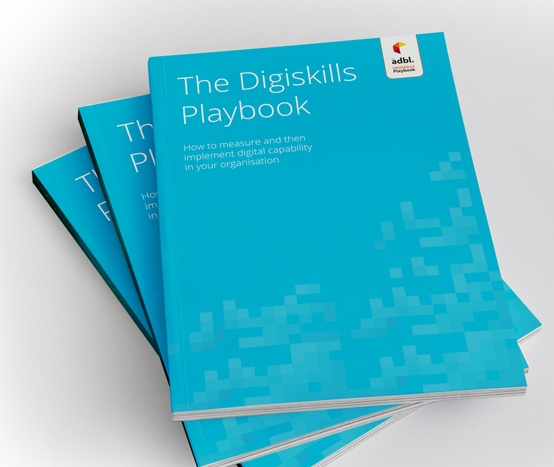 digiskills survey picture of final report