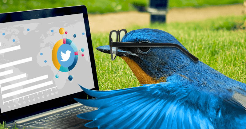 How to Create the Perfect Twitter Marketing Strategy