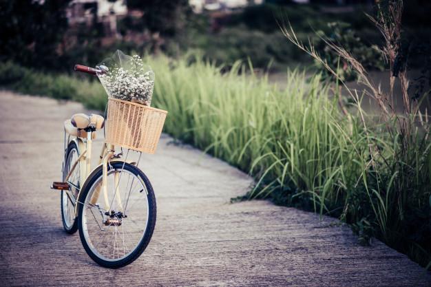 ركوب الدراجة الهوائية - الدراجات الهوائية - رحلات سياحية