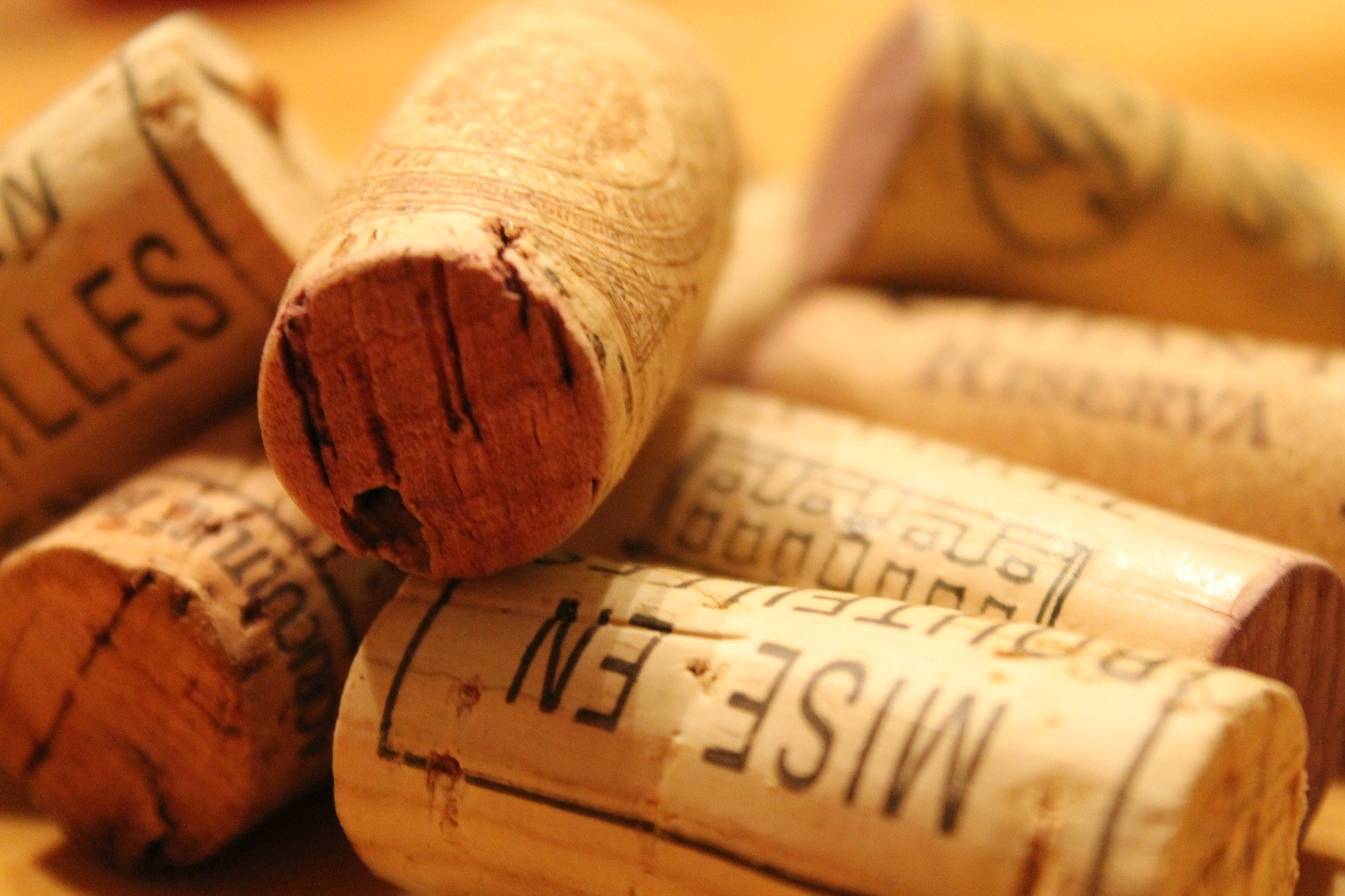 wine-647832_1920-1