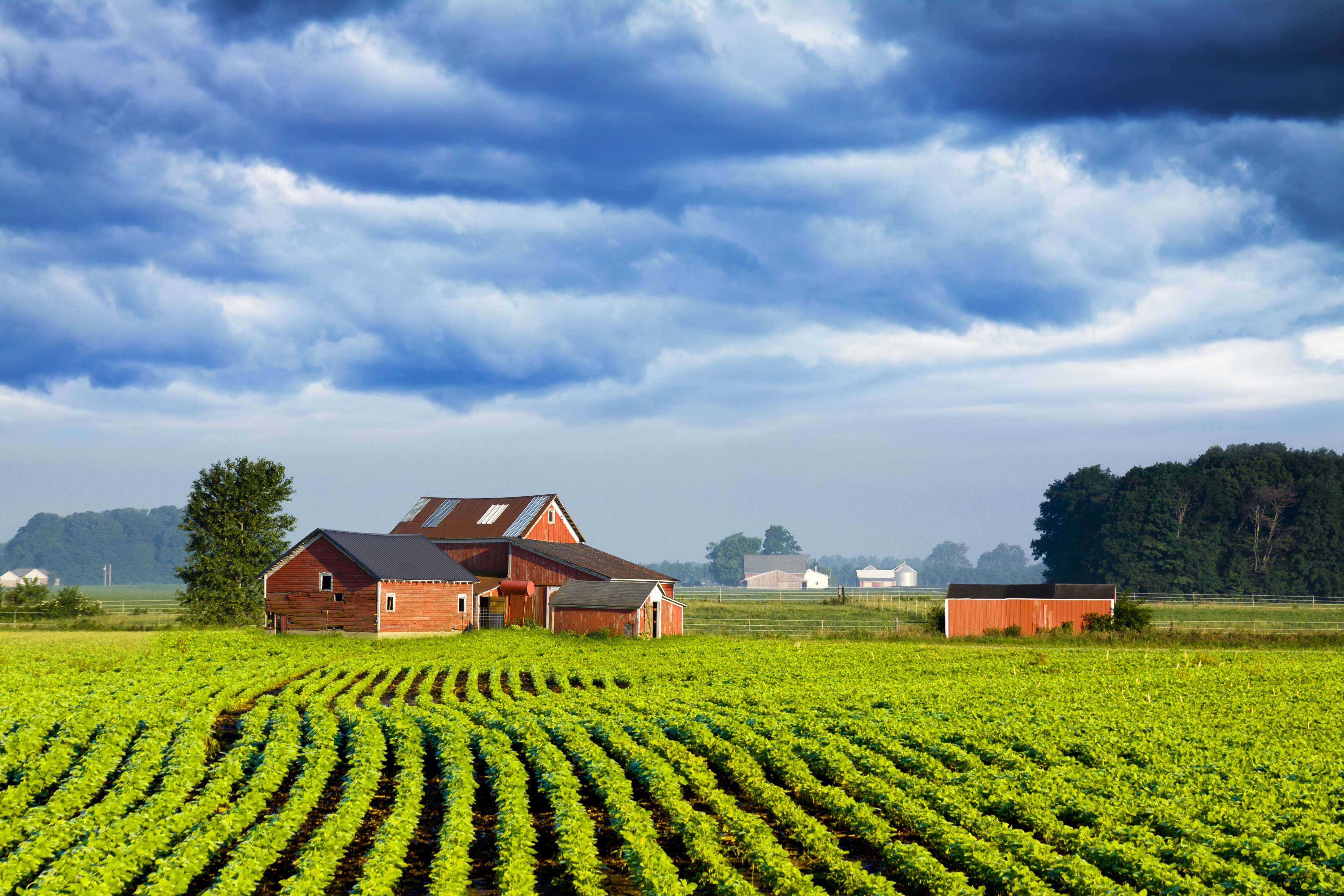 Southern USA National Farm Machinery Show
