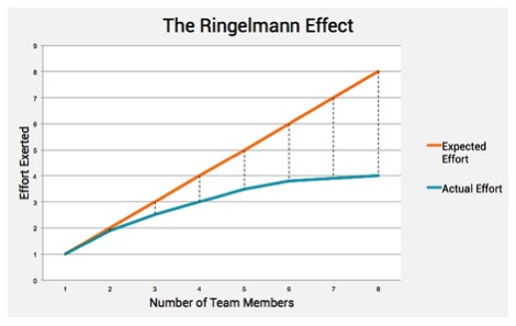 Ringelmann_graph.jpg