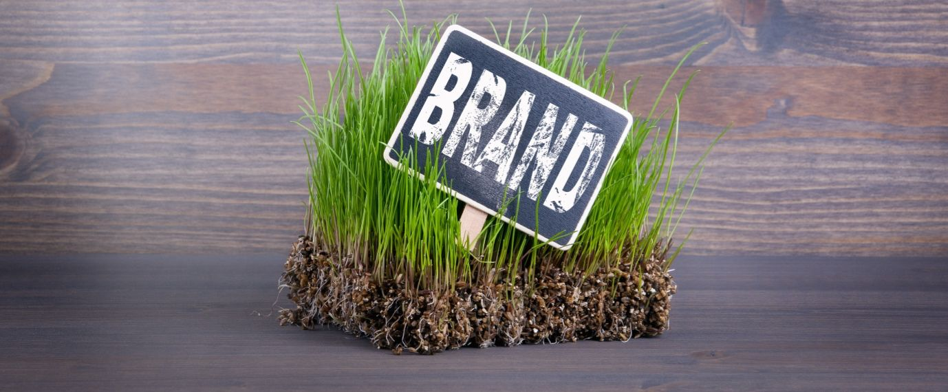 Brand Strategy 101: 7 Essentials for Strong Company Branding
