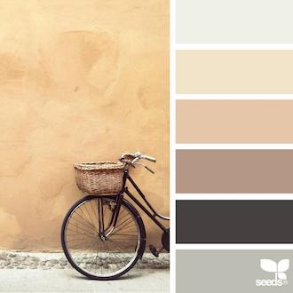 design-seeds-instagram-1.png