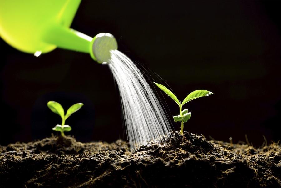 5étapes pour élaborer des campagnes de lead nurturing qui génèrent des résultats