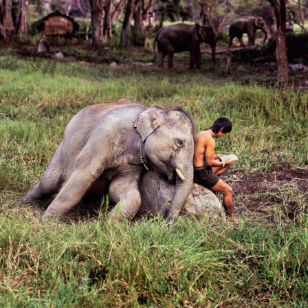 national-geographic-instagram-4.png