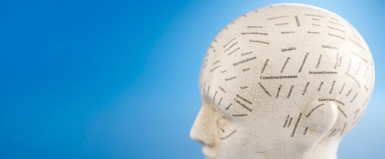 psychology-head.jpg