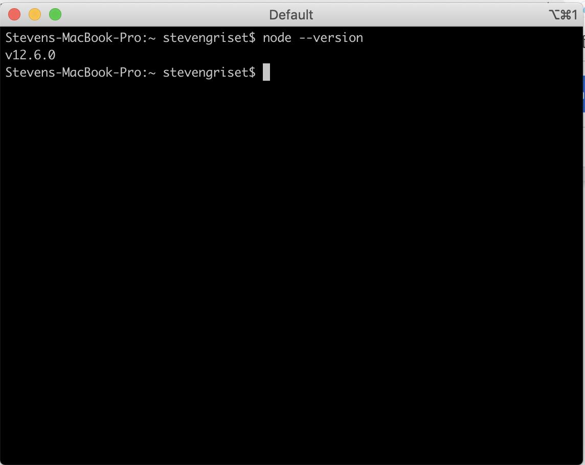 Screenshot of procedures. alwaysAI Computer Vision Platform using Raspberry Pi