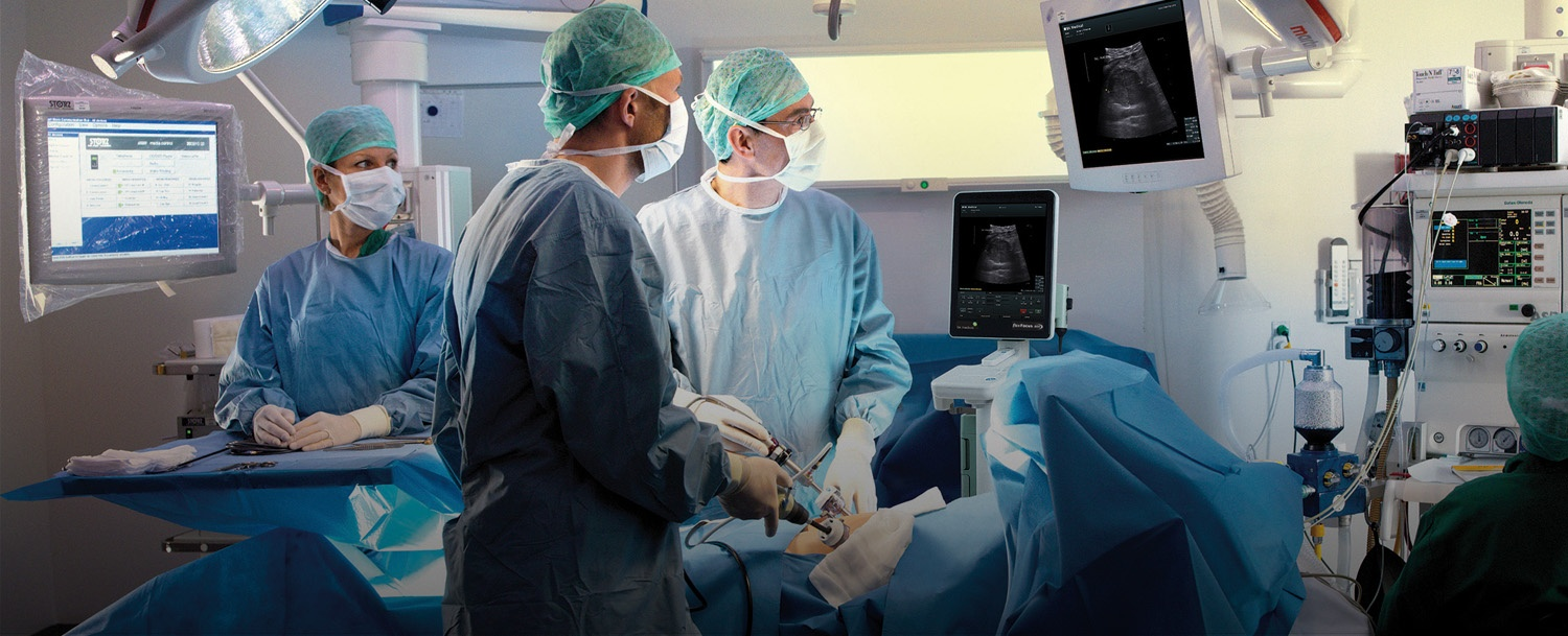 Laparoscopic Ultrasound-Guided Tumor Ablation [Video]