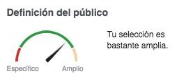 Definición y Alcance de Publico.