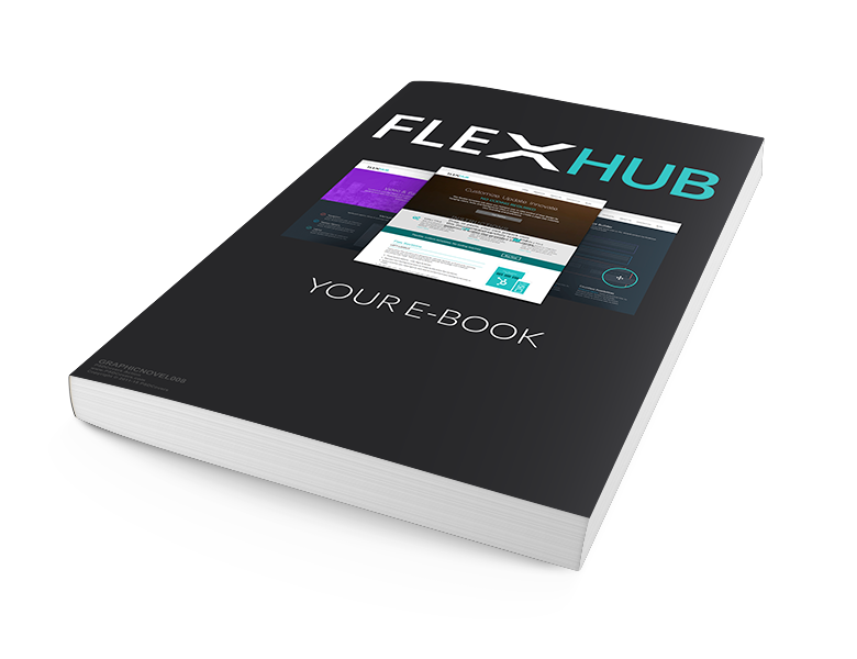 flexhub-ebook1-OPTM.png