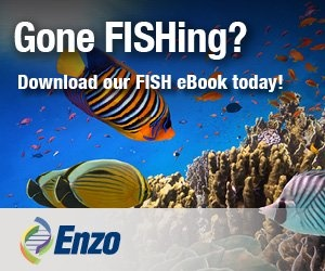 Download this Resource Guide from Enzo Life Sciences