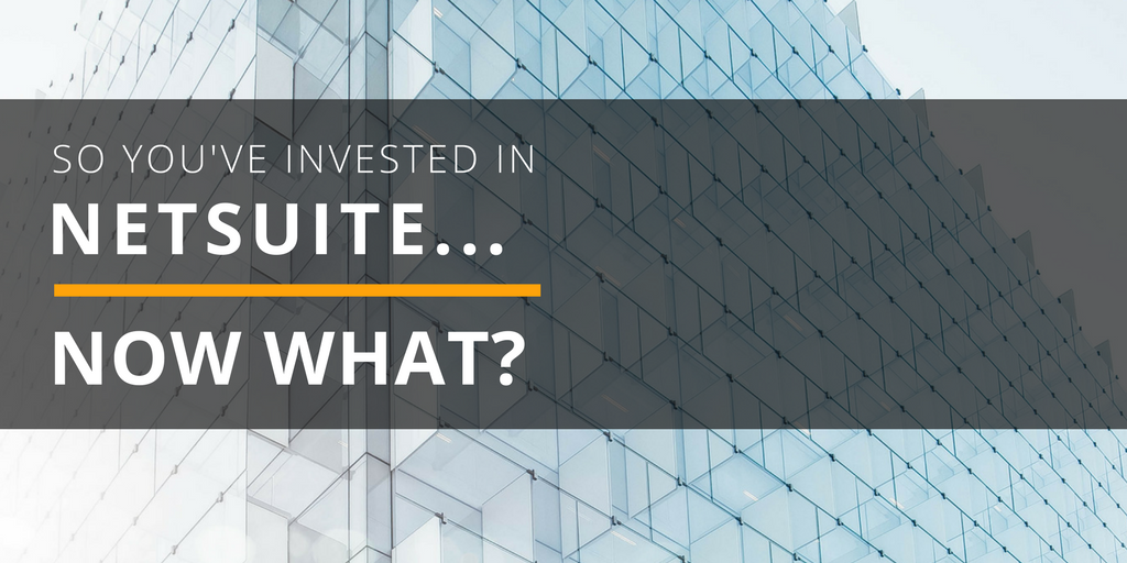 so you've invested in netsuite blog image.png