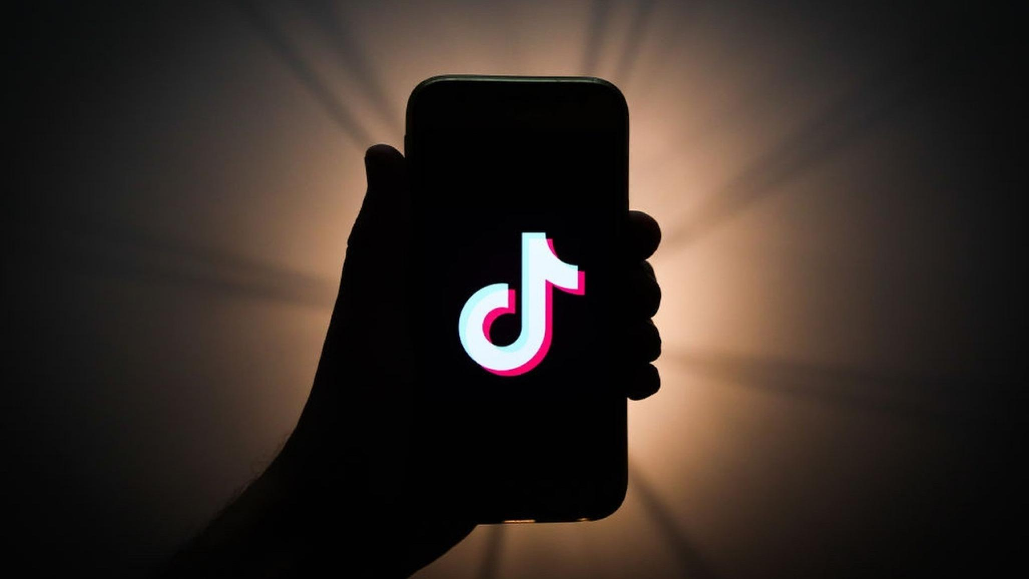 TikTok seems poised for the long-term success that eluded Vine