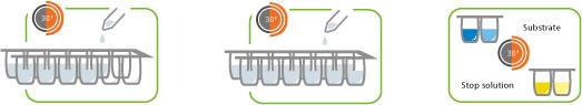 deteccion alergenos zeulab proteon-ensayo-elisa-kit