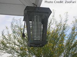 Bug_zapper_mosquito_control_myth_250.png