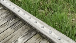 Edge of weathered wooden boardwalk across grassy wetland in a public park in spring, northern Illinois-818848-edited.jpeg