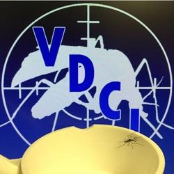 VDCI_Toxorhynchites_rutilus_Dallas_Texas_Web.jpg