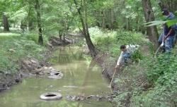 larval-surveillance-creek-250x152-blog_timb