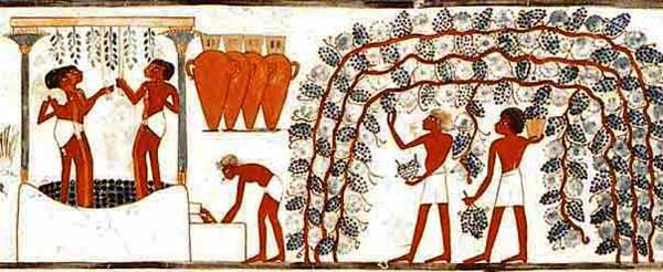 Egyptian_Winemaking