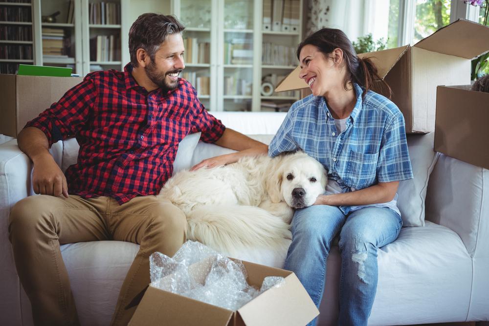 Tierhalterhaftung gemäss Art. 56 OR oder wenn dein Liebling einen Schaden verursacht