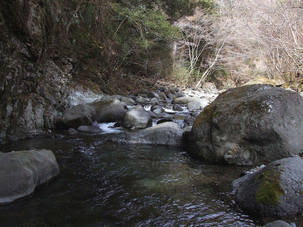 028-036dantou-keiryu_cs6 (39)