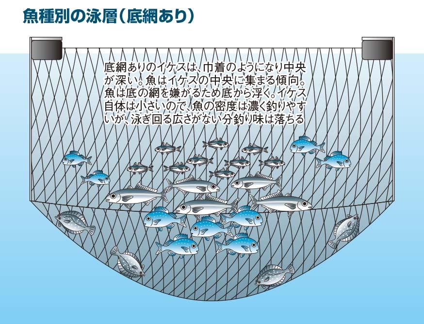 【海上釣り堀入門】イラスト:底網あり