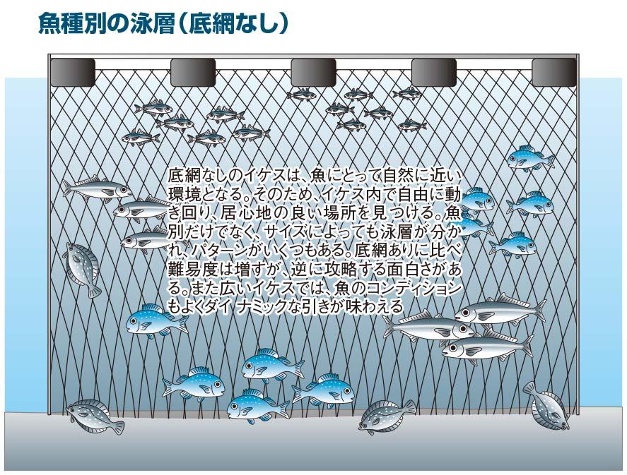 【海上釣り堀入門】イラスト:底網無し
