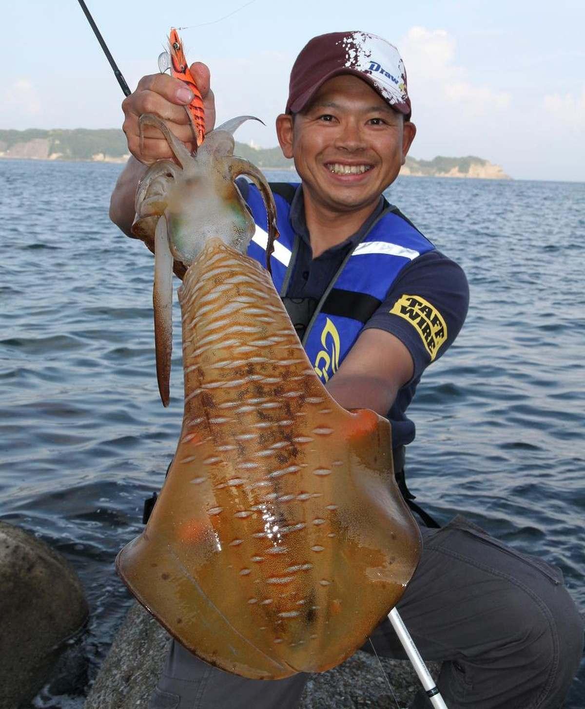イカの釣れる時期
