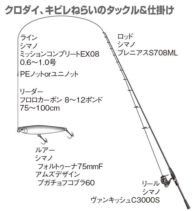 p 085-087-01 1c