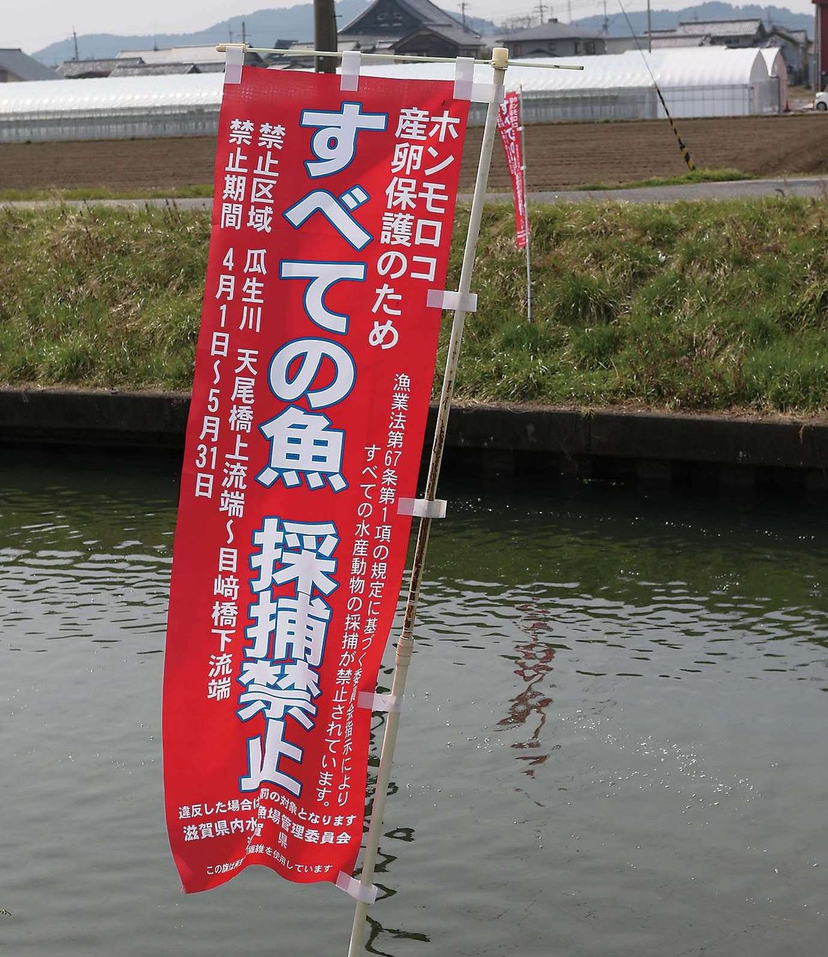 078-101_zenkokutsuribaGW06_cs6 (96)
