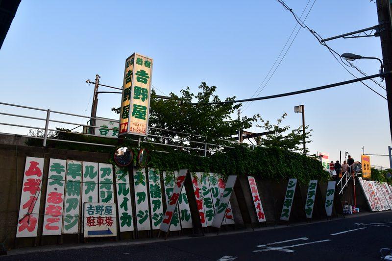【東京湾の餌木タコ(エギタコ)入門】釣り人にとって浦安のテーマパークは吉野屋