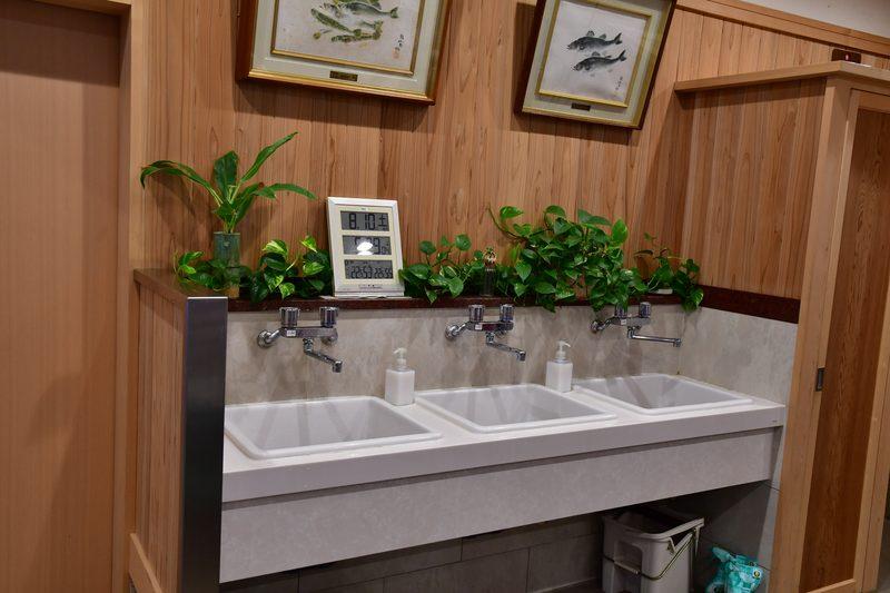 【東京湾の餌木タコ(エギタコ)入門】吉野屋はキレイな手洗い完備!